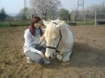 Behandlung mit Pferd, Pferdegestützte Ergotherapie, therapeutisches Reiten